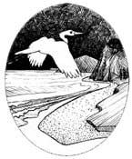 South-Coast-logo