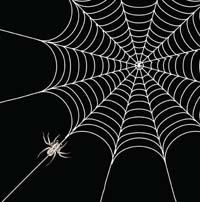 Angels spiderweb art