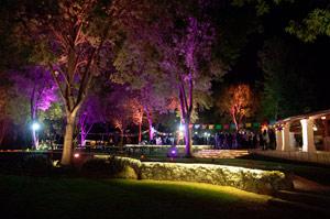 Sma-opening-night-2013